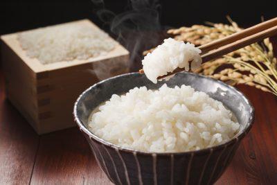 白米のご飯