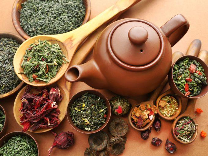 烏龍茶の種類