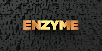 Enzyme 酵素