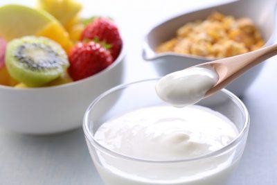 発酵食品 ヨーグルト