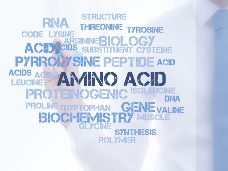 アミノ酸を示すローマ字