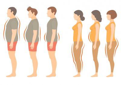 男女の肥満タイプを示したイラスト