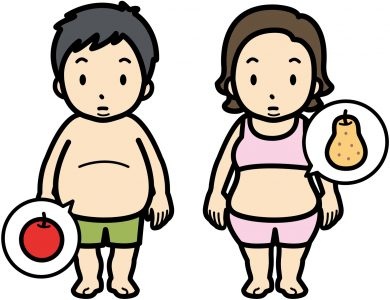 リンゴ型と洋ナシ形の肥満の男女