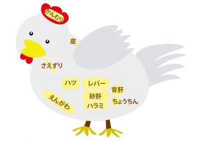 鶏肉 内臓部位の名称