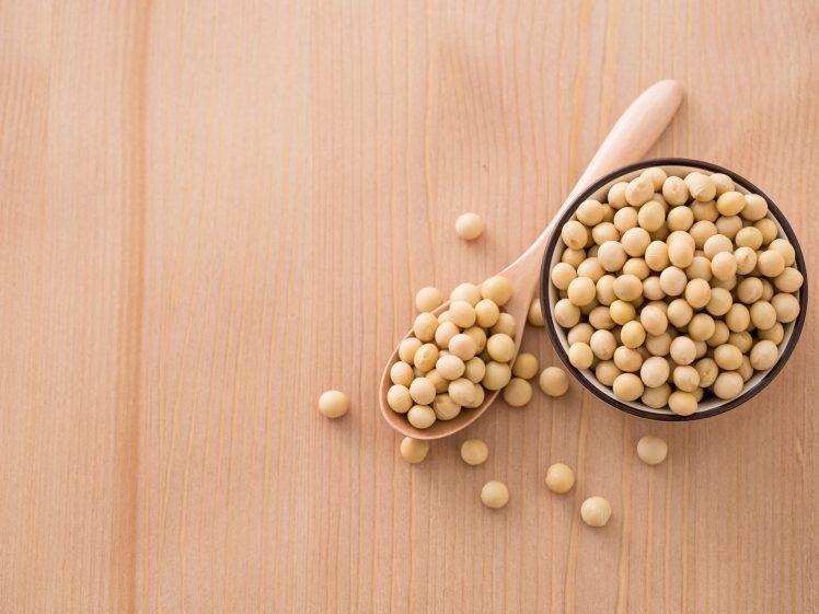 小皿と匙に盛られた大豆